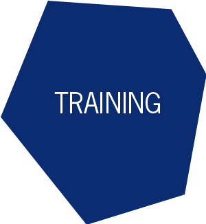 Aviation Training Services